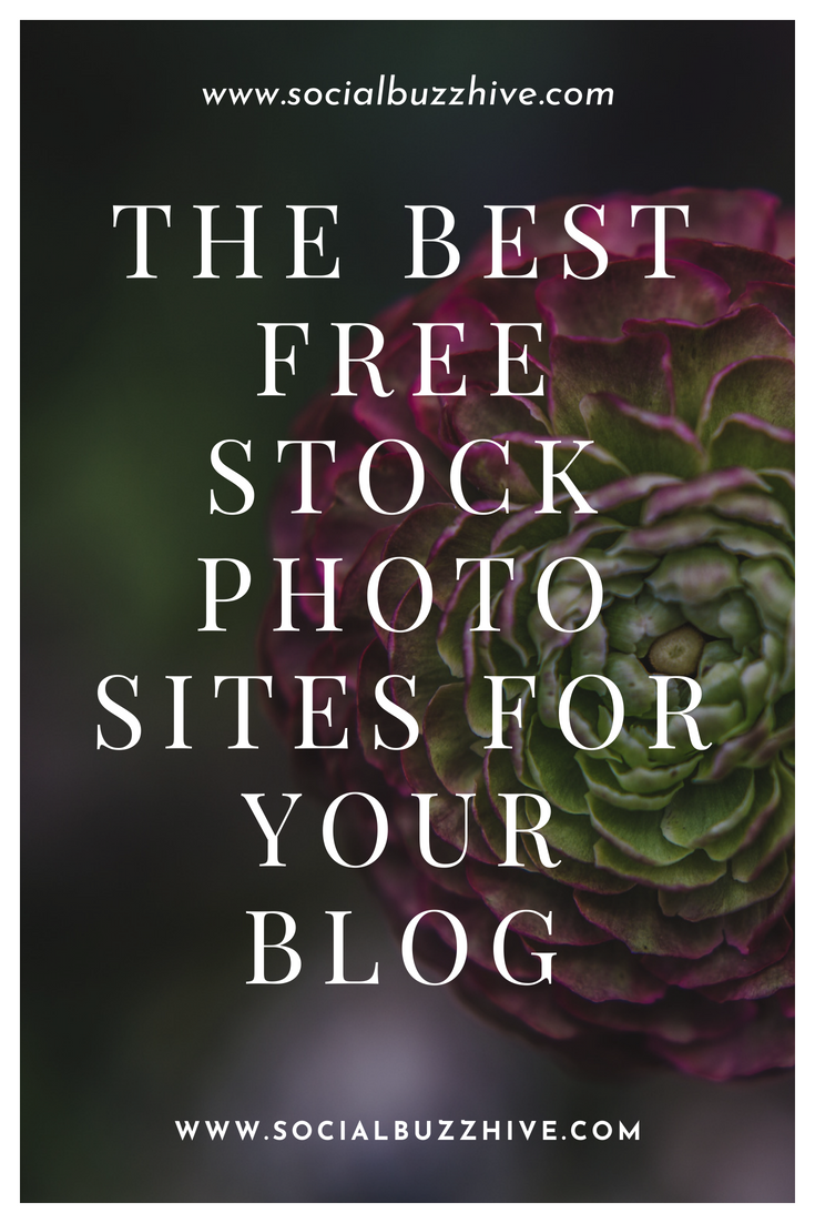 the best free stock photo sites for your blog socialbuzzhive