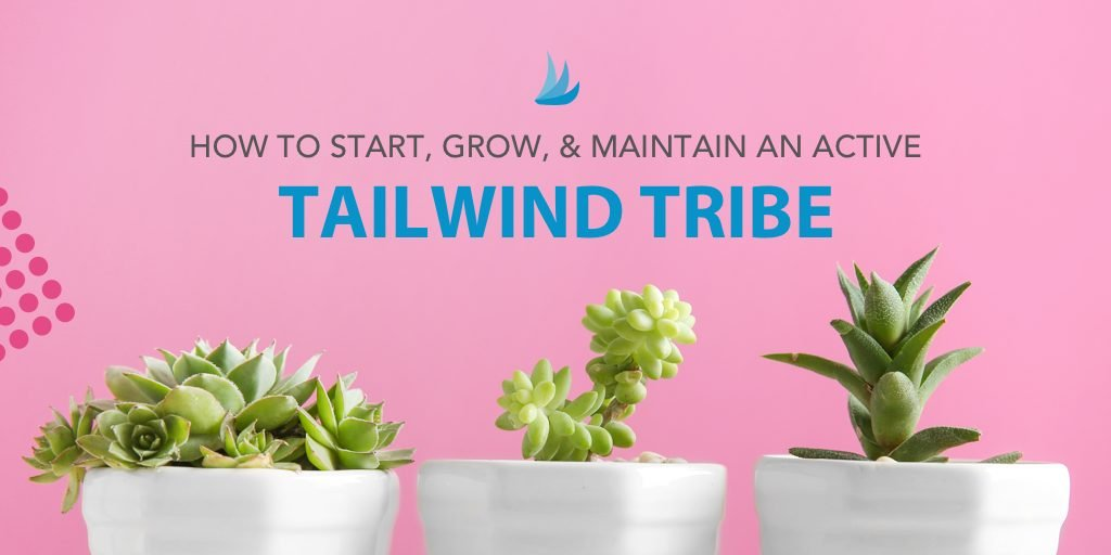 Tailwind Tribe image