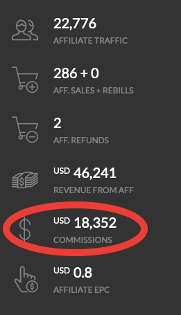 affiliate earnings