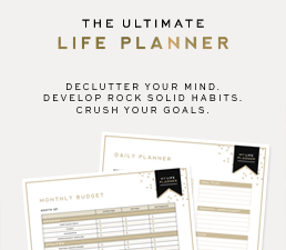 Life Planner image