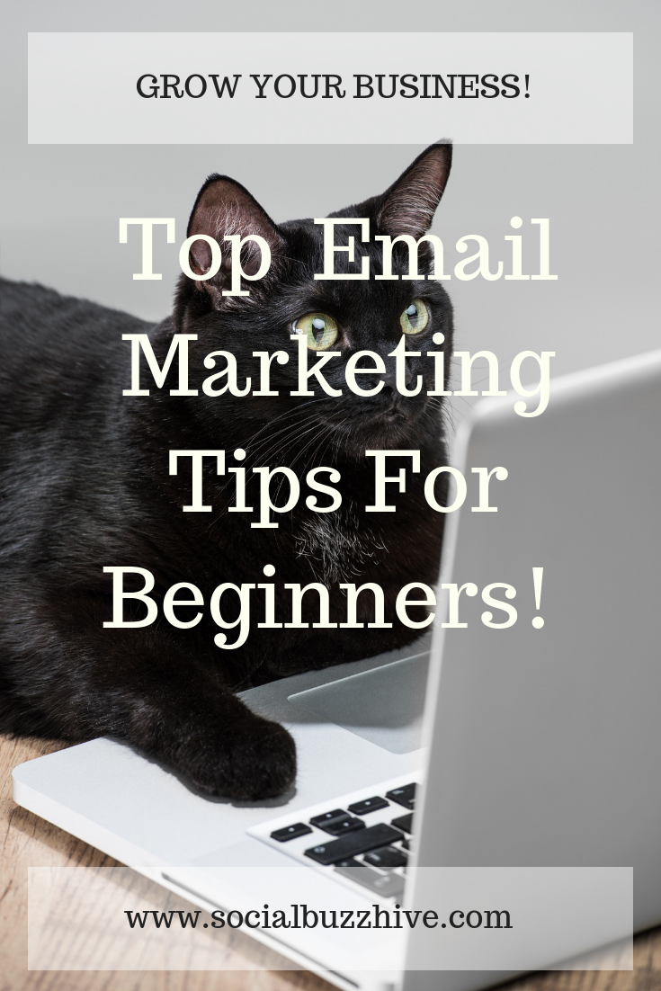 top email marketing tips for beginners
