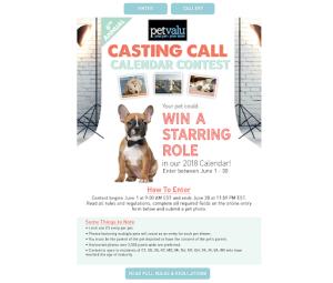 casting call contest