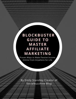 guide to affiliate marketing socialbuzzhive